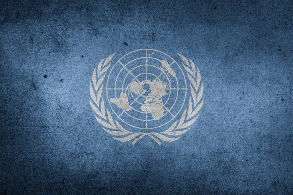 united nations, world, flag